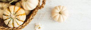 Seasonal foods to enjoy this Autumn